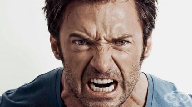 7 лесни техники за овладяване на гнева и раздразнението - изображение