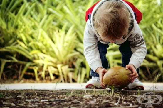 Интелектуалното развитие на децата според Жан Пиаже - изображение