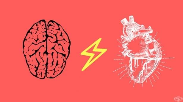 Рационално ли е да се доверяваме на интуицията си - изображение