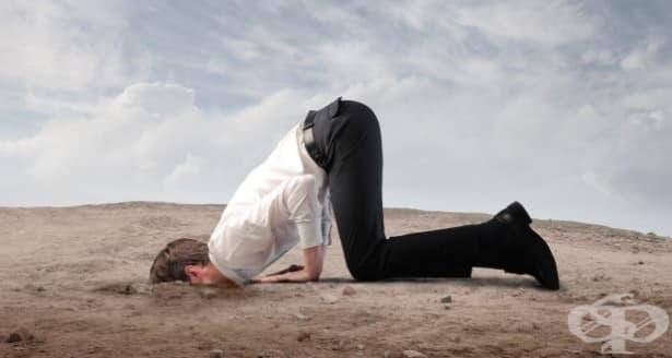 Самопомощ: Преодоляване на отбягването чрез степенувано излагане - изображение