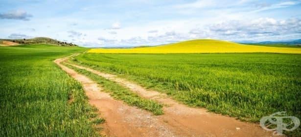 Притча: Животът ни се дава на парченца... - изображение