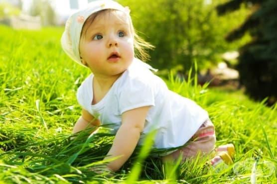 Как бебето опознава света - изображение