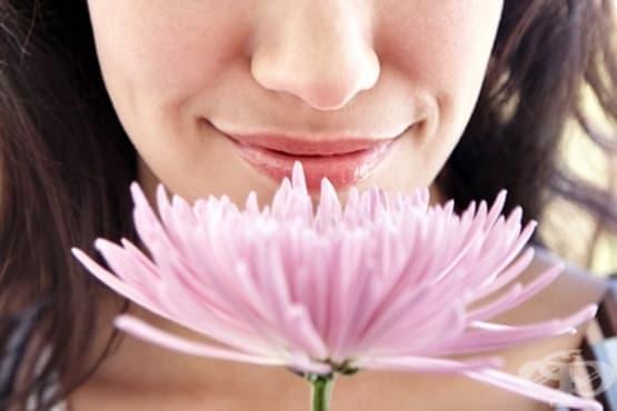 Как миризмите влияят на човешката психика - изображение