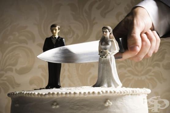 Какво подхранва разводите - изображение