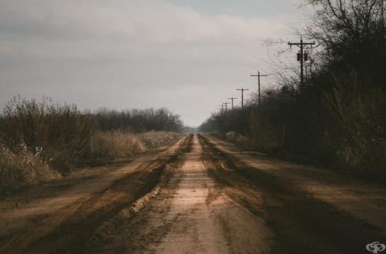 Притчата за калния път: трудността да оставиш тревогите си и да гледаш напред - изображение