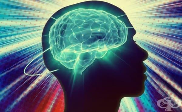 Александър Лурия и ролята му в развитието на невропсихологията - изображение