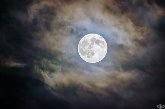 Дзен притча: луната не може да бъде открадната - изображение