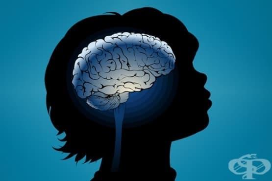Майчините грижи влияят пряко на мозъчното развитие - изображение