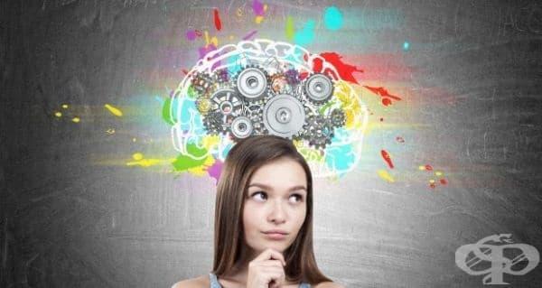 Три мита за мозъка на тийнейджъра - изображение