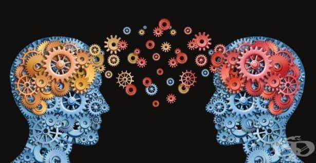 Думите променят мозъка - изображение