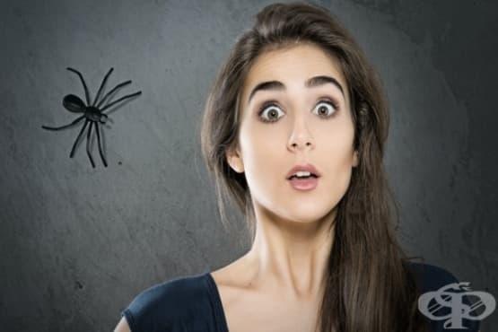 Най-често срещаните фобии и причините за тях - изображение