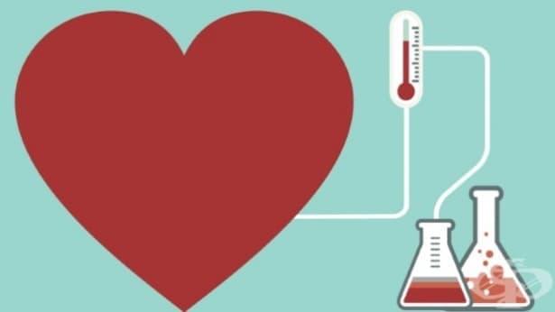 4 често срещани въпроса относно науката за любовта - изображение