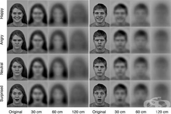 Новородените виждат различно - изображение
