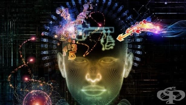 10 интересни факта за човешката памет, които трябва да знаете — част 2 - изображение
