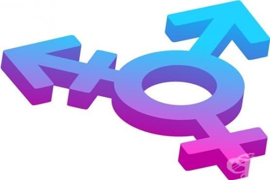 Патология ли е транссексуалността - изображение