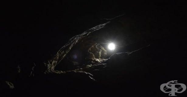 """Основни уроци от """"Митът за пещерата"""" на Платон, които можем да приложим в живота си - изображение"""