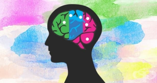 Наръчник за различните подходи в психотерапията – Част 2 - изображение
