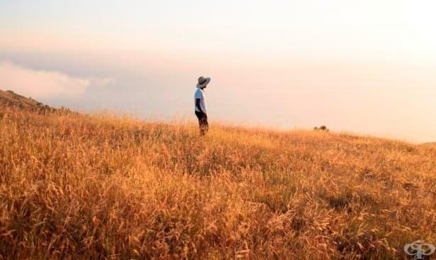 Притча за фермера: нещастието следва благополучието, добрият късмет - бедите и така до края на света - изображение