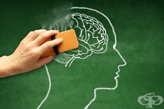 Забравените предимства на слабата памет - изображение