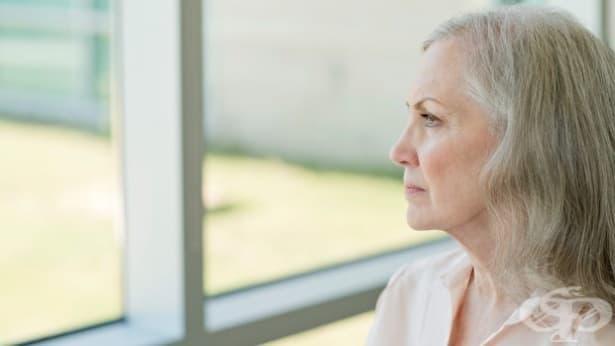 Невинаги е Алцхаймер: Какво причинява загуба на памет - част 2 - изображение