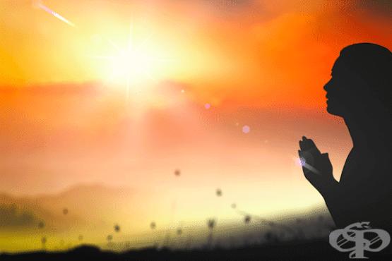 Прошката може да е терапия - изображение