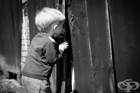 Психология на любопитството — част 1 - изображение