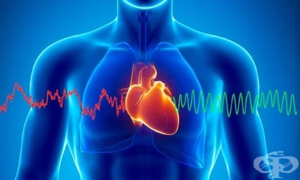 Сърдечна кохерентност: физическа и емоционална хармония - изображение