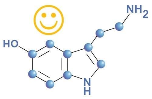Серотонин: Хормонът на щастието и как той засяга нашето тяло - изображение
