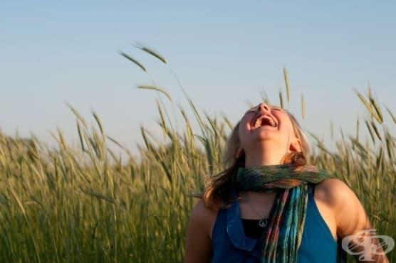 7 елемента, изпълващи със смисъл всекидневието ни  - изображение