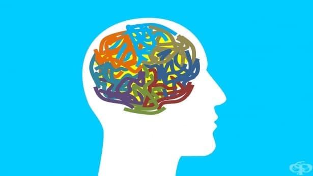 Синдром на Аспергер: признак за гениалност или още една форма на аутизъм - изображение