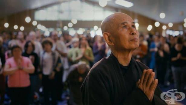 Страданието е калта, в която разцъфва лотосът на щастието: Уроци по щастие от Тик Нят Хан – част 2 - изображение