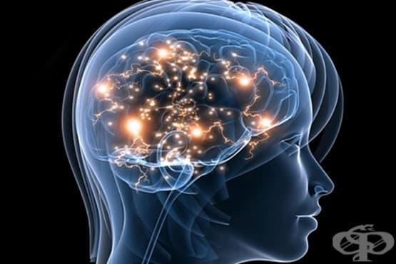Травматичните събития променят мозъка - изображение