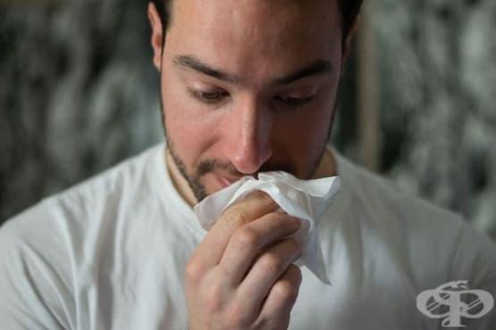 Защо тревожните хора често имат алергии - изображение