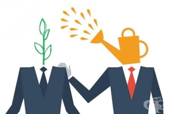 Фокусът на успешния ментор е върху цялата личност, не само върху кариерата - изображение