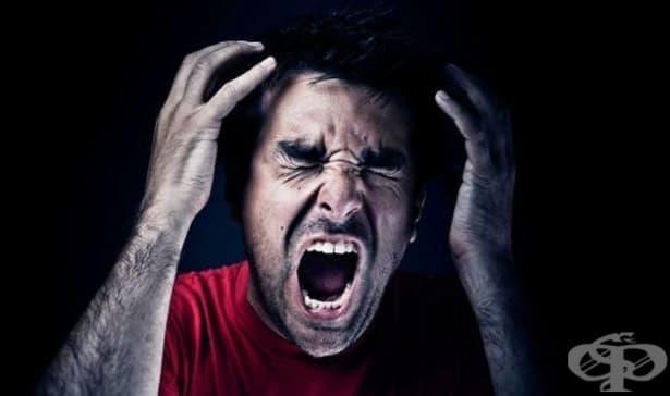 Кога човек е склонен да навреди на друг? Вижте какво показва най-скандалният социален експеримент (Снимки) - изображение