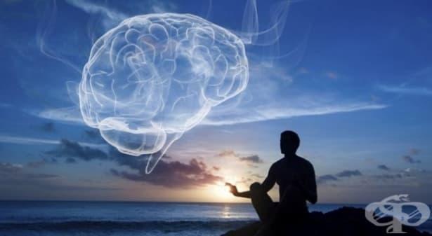 Йога и медитация правят положителни промени в нашия мозък - изображение