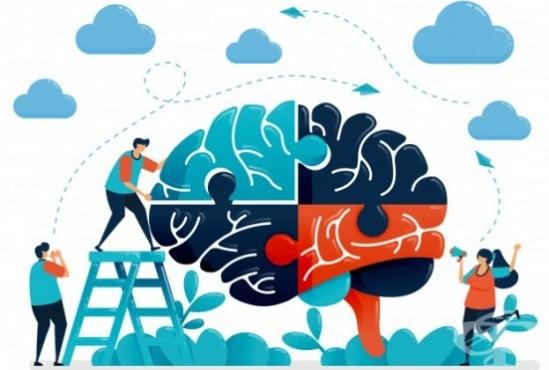 Защо мозъкът винаги си намира нови проблеми - изображение