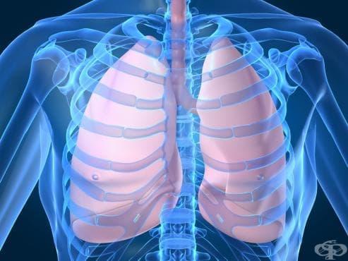 Латентна туберкулозна инфекция - изображение