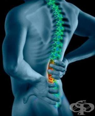 Болките в гърба и кръста - причини, специфика, изследване и лечение - изображение