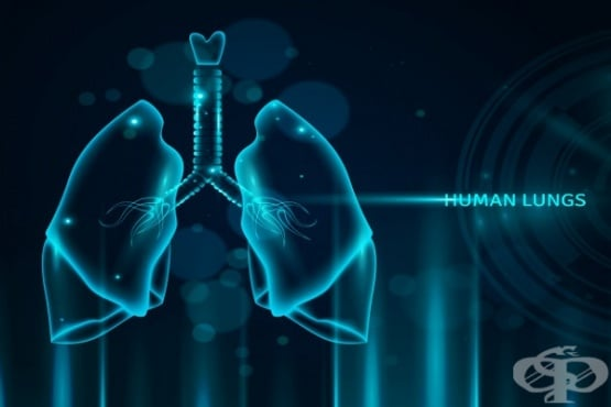Защо коронавирусът SARS-CoV-2 се размножава по-бързо в горните дихателни пътища  - изображение