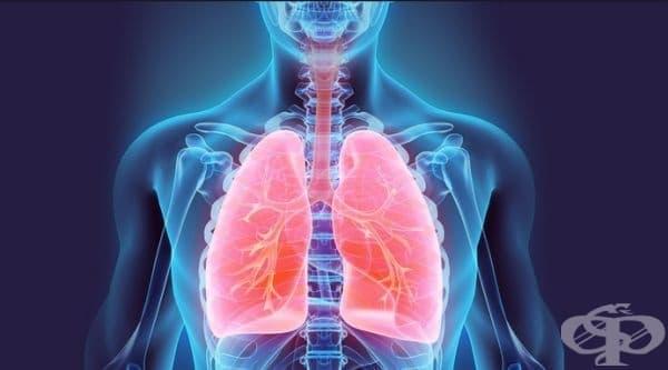Тест за определяне на работоспособността и натоварването на дихателната система - изображение