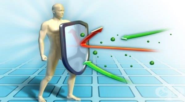 Проверете текущото състояние на вашия имунитет - изображение