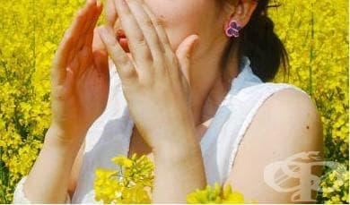 Алергичен ринит и сенна хрема – какво знаем? - изображение