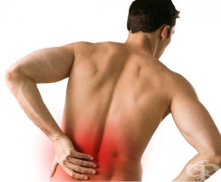 Какво знаем за болката в кръста? - изображение