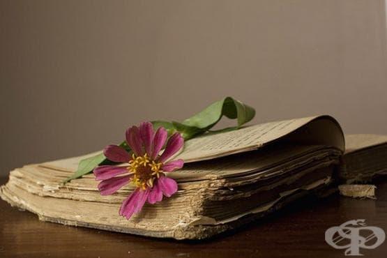 Честваме 1 ноември - познавате ли творчеството на българските писатели-медици? - изображение