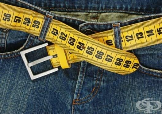 Как да свалим излишните килограми и то съвсем здравословно? - изображение