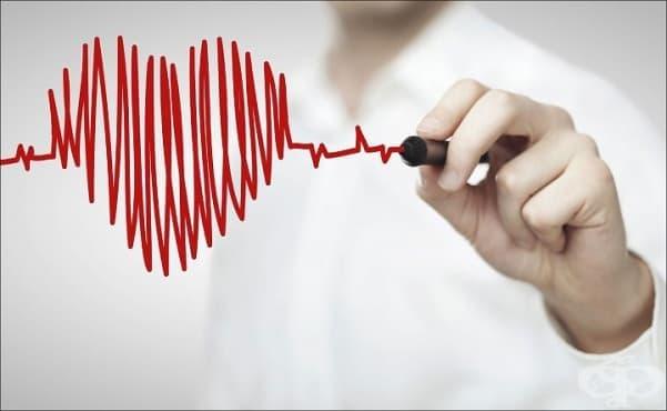 На каква възраст е Вашето сърце? - изображение