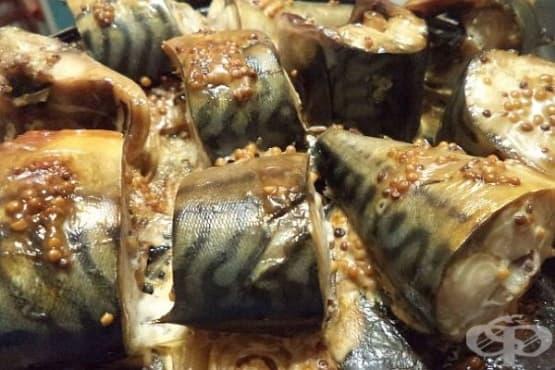 Печена скумрия в марината от горчица, майонеза и соев сос - изображение