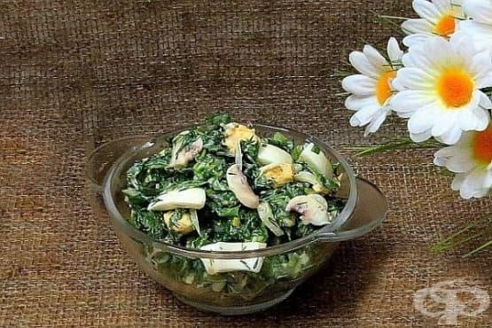 Зелена салата със спанак, копър, сметана и гъби - изображение