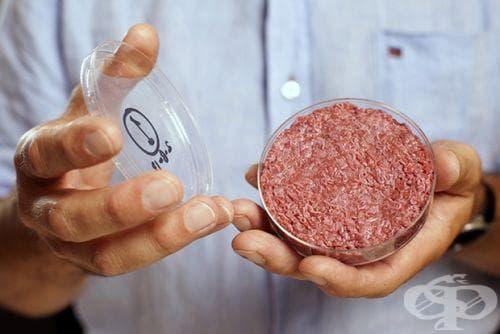 """""""Храна в епруветка"""" или продуктите на бъдещето - изображение"""